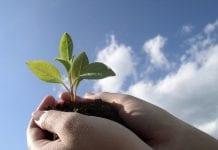 Αγροτική ανάπτυξη Κυβέρνηση