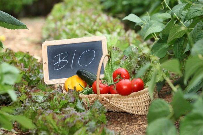 εξόφληση Προκήρυξη Βιολογική Βιολογικής Καλλιέργειες