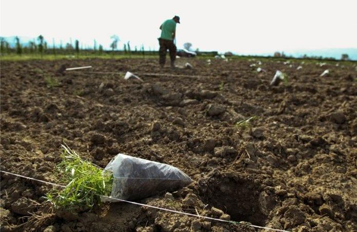 αγροτικό ακατάσχετο πληρωμή ενισχύσεις