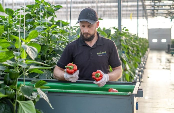 ευάλωτα αγροτικά προϊόντα νέα προγράμματα πληρωμή
