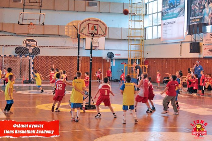 Lions basketball academy