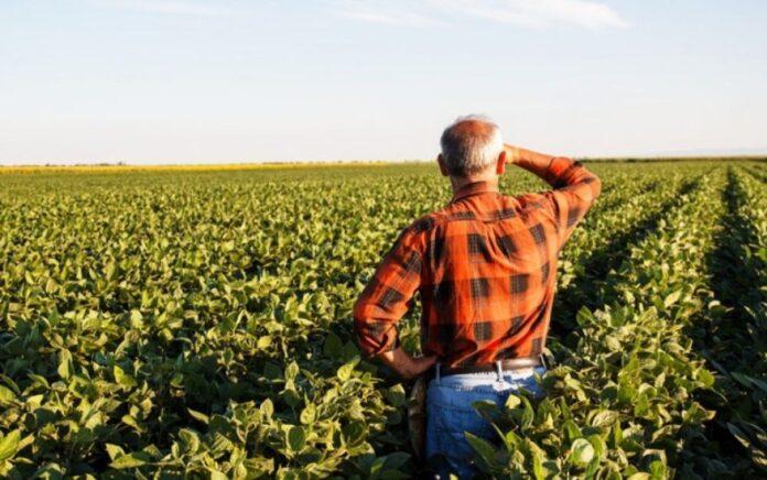 αγροτικά δάνεια Προγράμματα Σχέδια νέων αγροτών