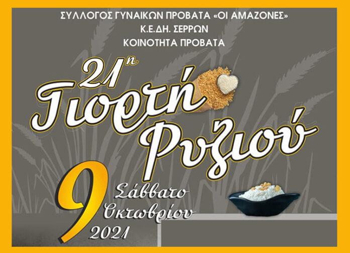 Σέρρες - 21η Γιορτή Ρυζιού στον Προβατά serrespost.gr